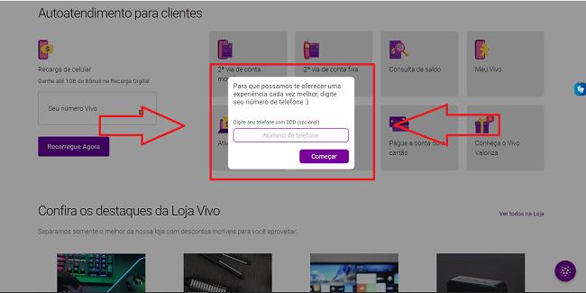 Print apontando onde colocar o numero de telefone para acessar o chat Vivo